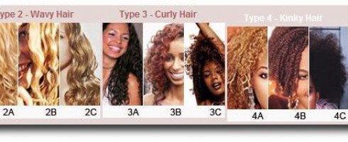 type de cheveux images